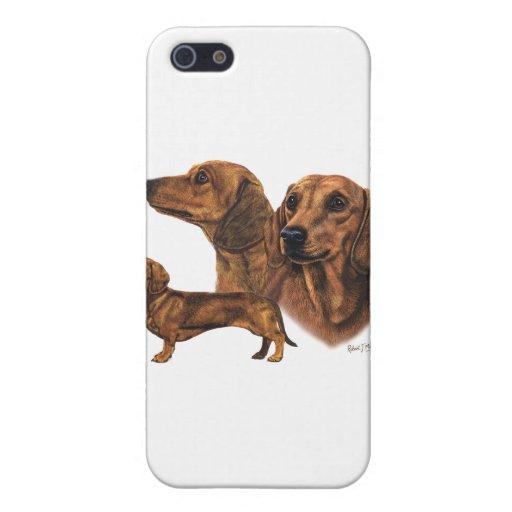 Dachshund Iphone S Case