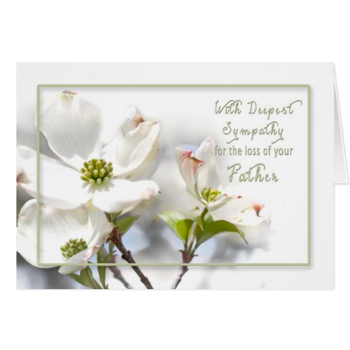 Sympathy Quotes For Loss Of Husband And Father: DEEPEST SYMPATHY - APPLE BLOSSOMS/ LOSS/FATHER CARD