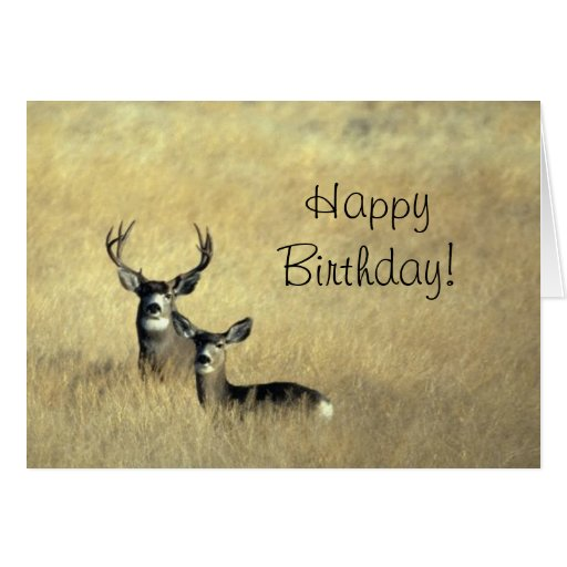 Deer With Antlers Happy Birthday Day Greeting Card