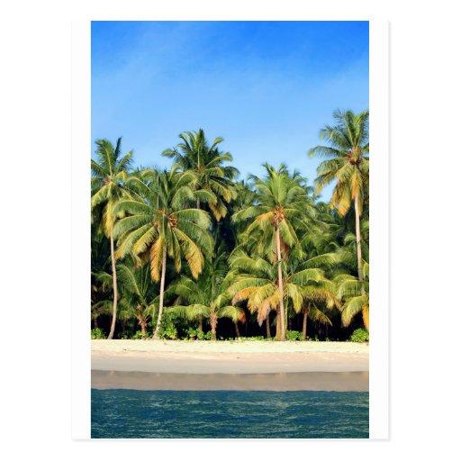 Deserted Island Beach: Deserted Tropical Island Beach Postcard