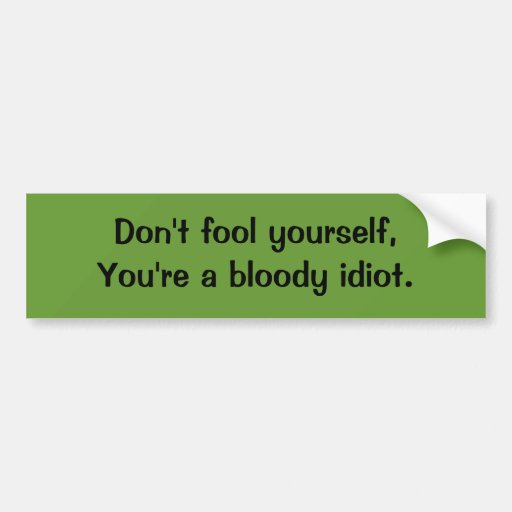 Don't Fool Yourself, You're A Bloody Idiot. Car Bumper