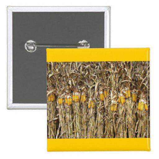 Corn Stalk Decoration Ideas: Dried Corn Stalk Decorations Pinback Button