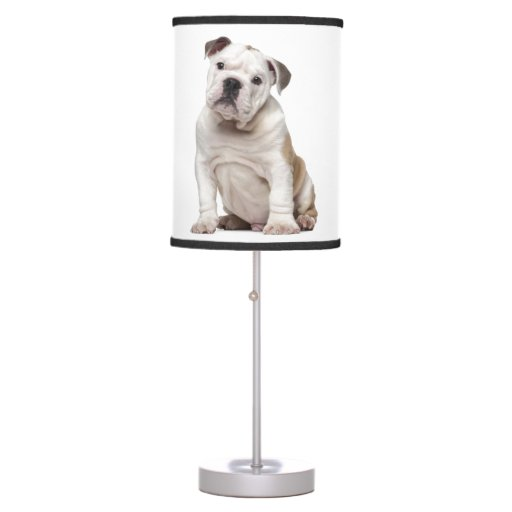 English Bulldog Puppy 2 Months Old Desk Lamp Zazzle