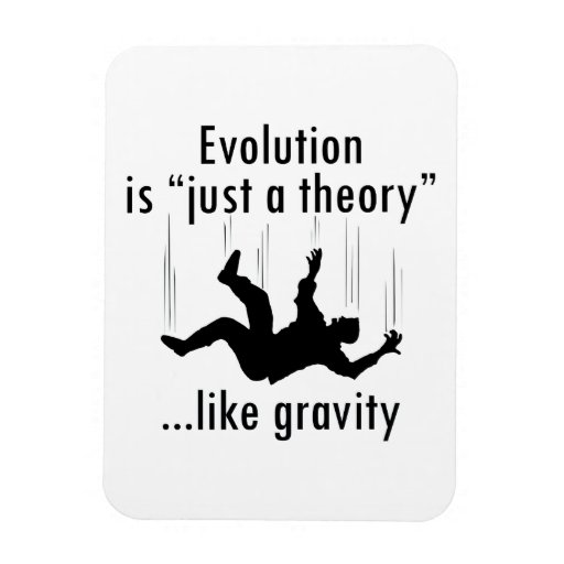 Evolution Is Just A Theory Magnet Zazzle