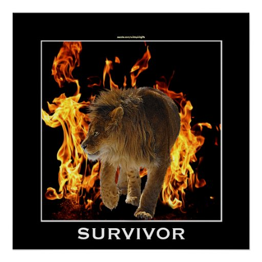 Flaming Fire & Lion SURVIVOR Motivational Poster