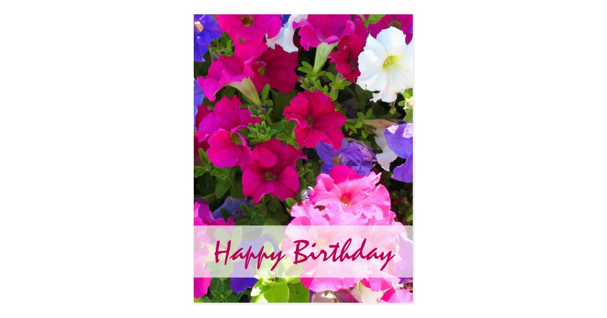 Flower Garden Happy Birthday Postcard Zazzle