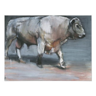 Cattle Breeds Posters ...