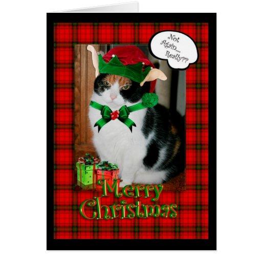 Funny Christmas card, grumpy cat Card | Zazzle