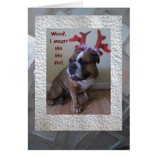 funny christmas bulldog - photo #33