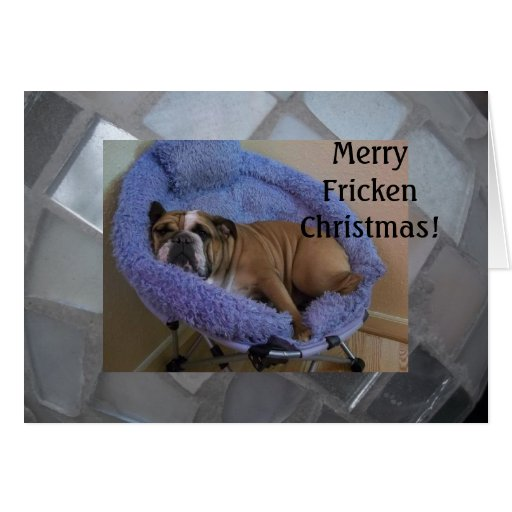 funny christmas bulldog - photo #28