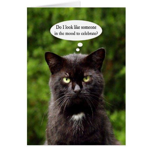 funny moody black cat birthday card  zazzle
