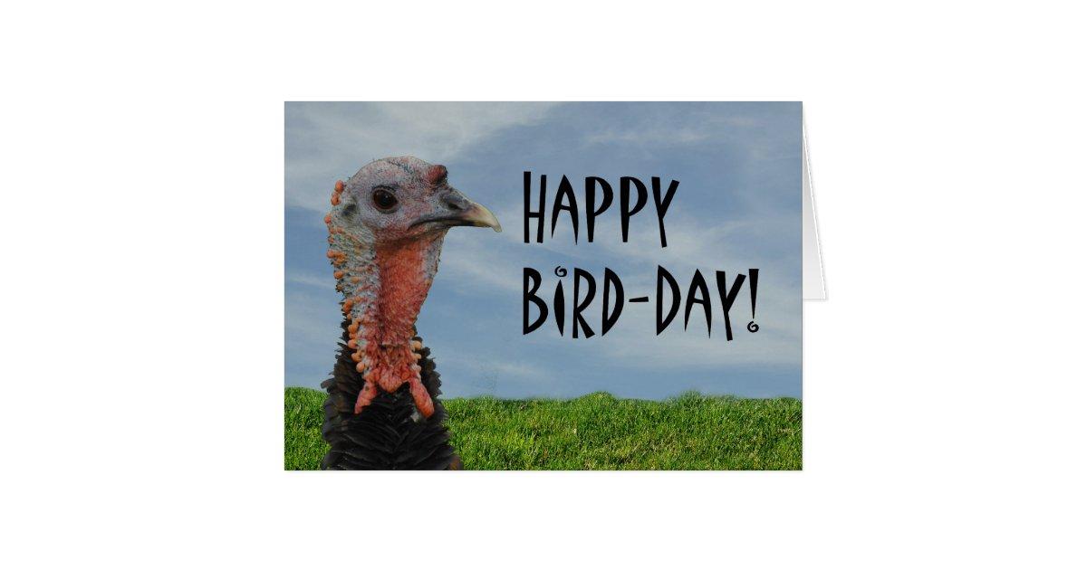 Funny Ugly Turkey Happy Thanksgiving Birthday Card   Zazzle