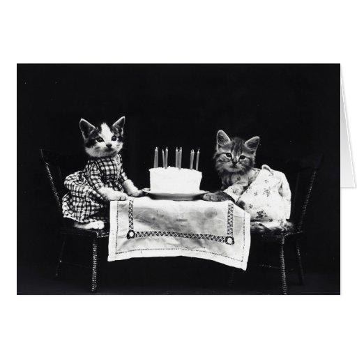vintage birthday cats cat - photo #23