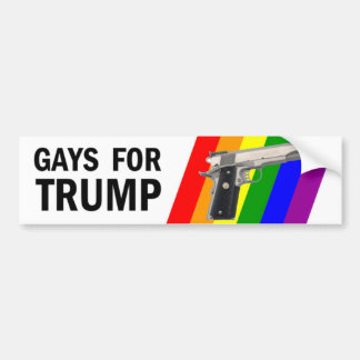 Bumper Sticker Gay 118