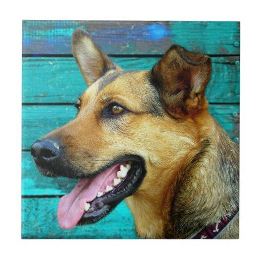 German Shepherd Dog Face Ceramic Tile Zazzle