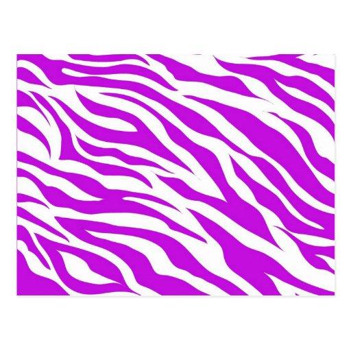White Zebra Pattern Gi...