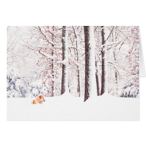 Gold And White Christmas Card