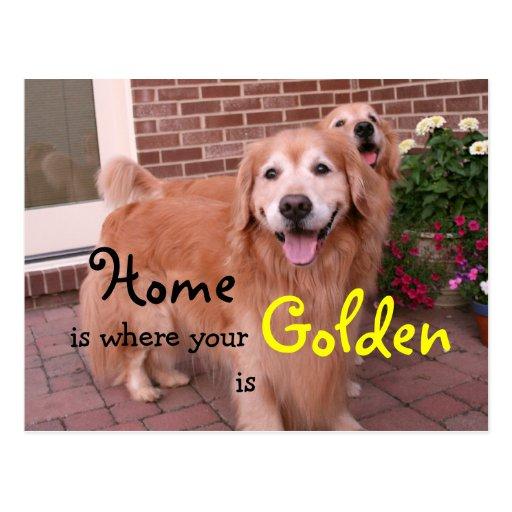 Golden Retriever Funny Saying Www Picsbud Com