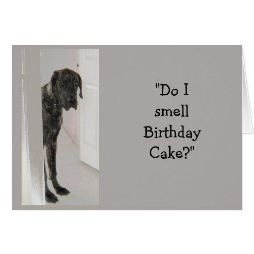 Great Dane Dog Humor SON Birthday Cake Fun Card