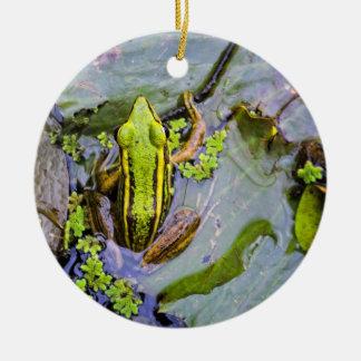 Frog Christmas Ornaments & Frog Ornament Designs | Zazzle