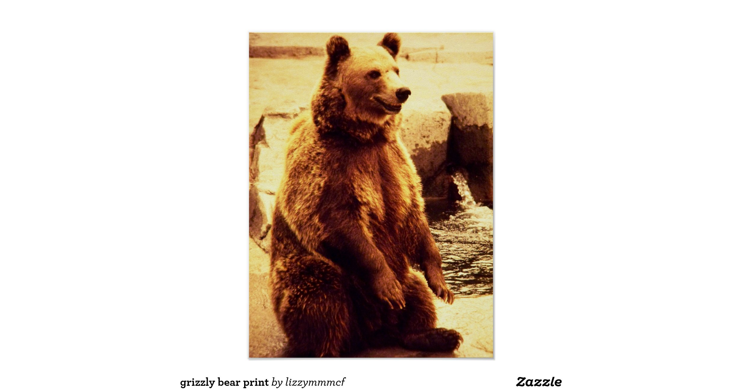 grizzly_bear_print-r67a7e9ced291489f9ae96adff5b55eeb_w5b ...