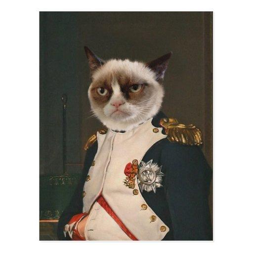 Grumpy cat classic painting postcard r8d430300efb34521b0770974ef55d36b vgbaq 8byvr 512