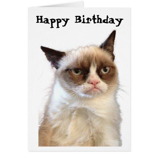 Happy Birthday Grumpy Cat