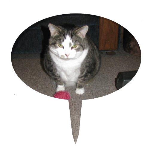 Grumpy Fat Cat is not amused Cake Picks | Zazzle