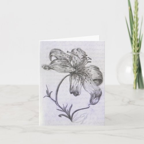 Hand-drawn Lily card