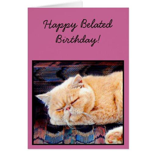 Birthday Orange Cat: Happy Belated Birthday Orange Persian Cat Card