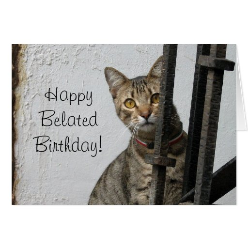 Birthday Orange Cat: Happy Belated Birthday Tabby Cat Greeting Card
