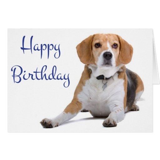 happy birthday beagle puppy dog greeting card  zazzle