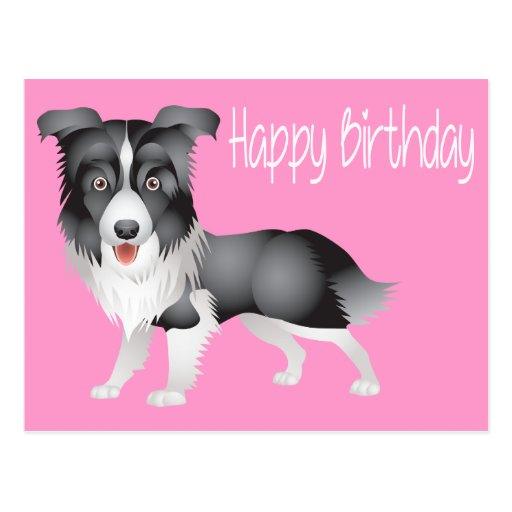 happy birthday border collie puppy dog post card  zazzle