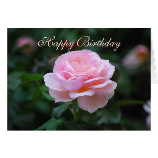 happy birthday delicate pink rose card  zazzle