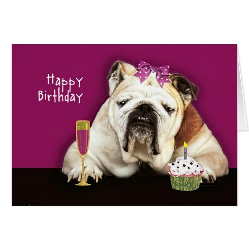 Happy Birthday, Getting Older, Funny Dog, Pink Bow Card