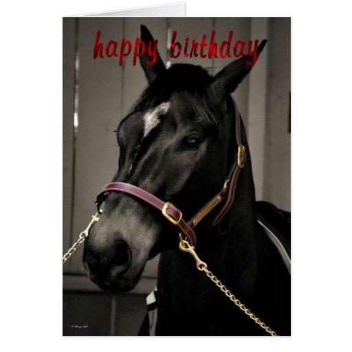 happy birthday horse birthday card horse lovers  zazzle