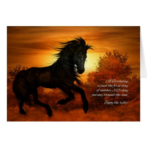 happy birthday horse in the sunset cards  zazzle