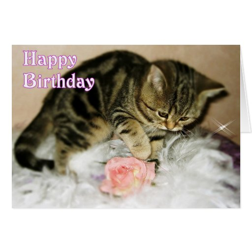 Birthday Orange Cat: Happy Birthday - Tabby Kitten Birthday Card