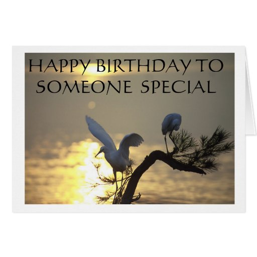 HAPPY BIRTHDAY TO SOMEONE SPECIAL GREETING CARDS