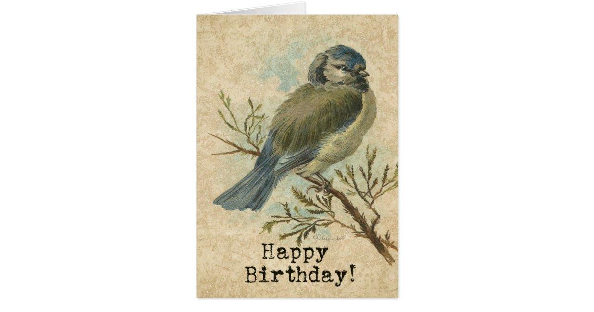 Happy Birthday, Vintage Bluetit Bird Card