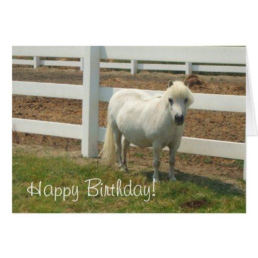 Happy Birthday White Miniature Horse Greeting Card