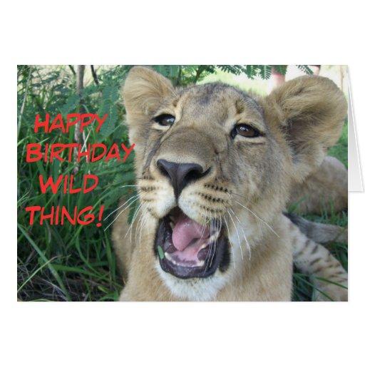 Happy Birthday Wild Thing Lion Cub Greeting Card