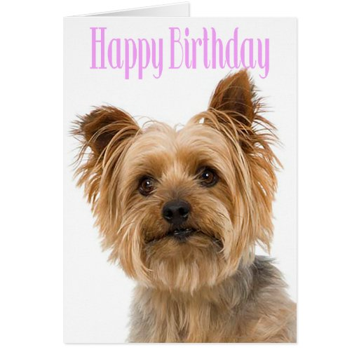 Happy Birthday Yorkshire Terrier Puppy Dog Pink Card