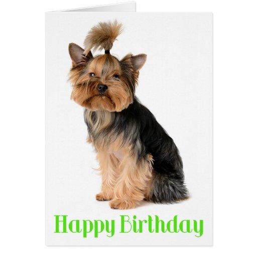 Happy Birthday Yorkshire Terrier Puppy Dog Verse Card