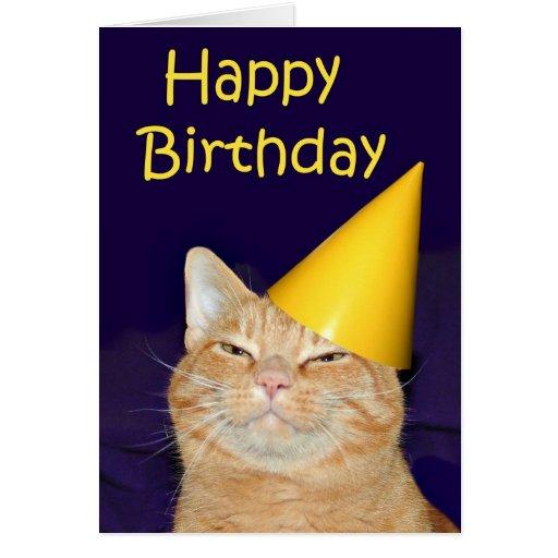 happy cat happy birthday greeting card  zazzle