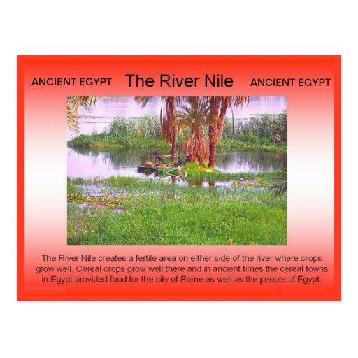 History, Ancient Egypt, River Nile Postcard