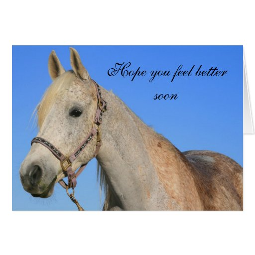 Hope To See You Soon Quotes: Hope You Feel Better Horse Greeting Card