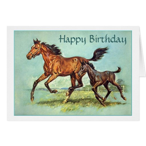 Horse And Foal Birthday Card