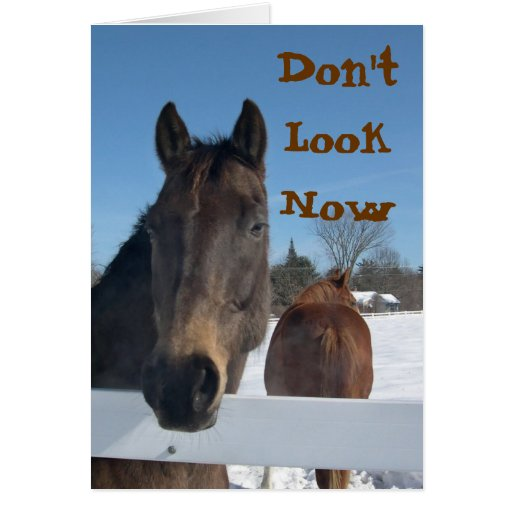 Strange Horses 50Th Birthday Card Personalised Birthday Cards Epsylily Jamesorg