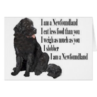 Newfies Greeting Cards   Zazzle
